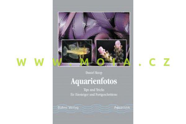 Aquarienfotos