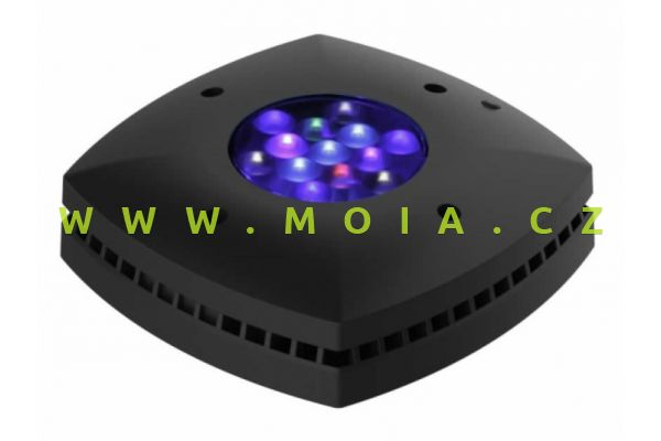Prime HD LED (black)