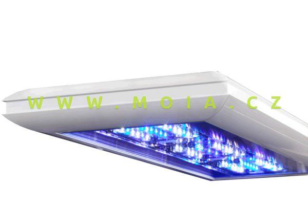 FUTURA S 1250 mm / marine - polar white