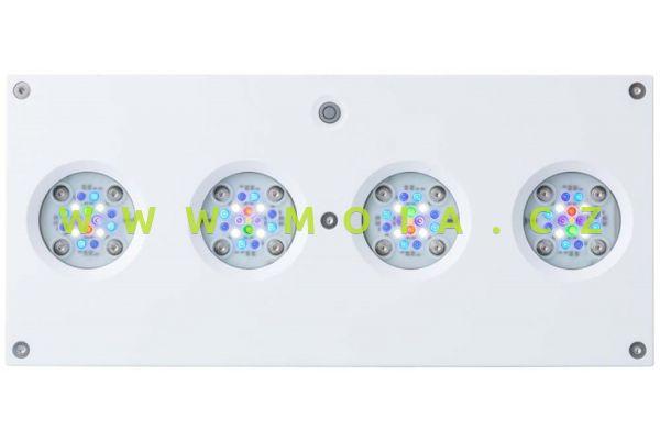 AI Hydra HD 64 LED - white